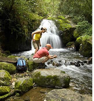 El Parque Internacional de La Amistad e vari dei suoi sentieri sono più facilmente accessibili da Cerro Punta